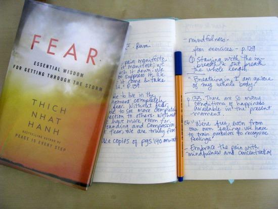 fear book2